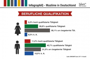 InfographiQ - Berufliche Qualifikation