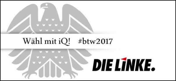 Banner iQ-Wahlprüfstein - Die LINKE © IQ