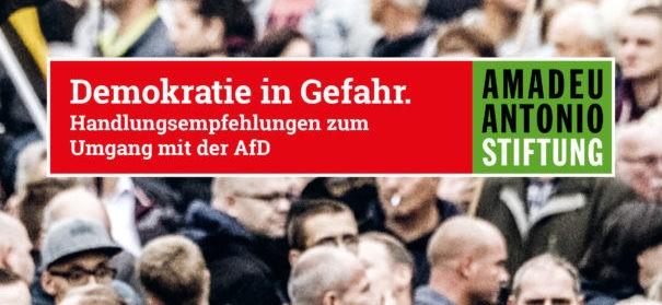 Handreichung der Amadeu Antonio Stiftung über die AfD