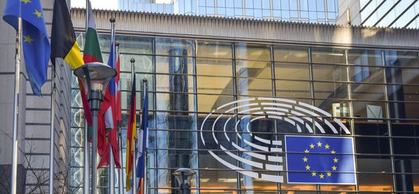 Europarat zu Rassismus in der EU-Politik