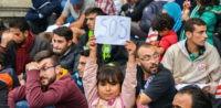 Flüchtlinge, Muslime