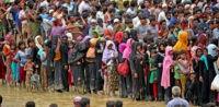 Stacheldraht, Rohingya