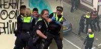 Polizeigewalt, Studie zu Rassismus bei der Polizei