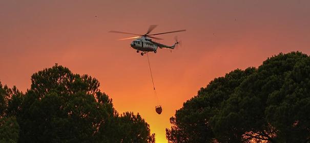 Symbolbild: Waldbrände in der Türkei